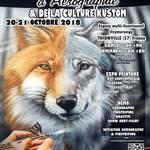 7ème Festival d'Aérographie & de la Culture Kustom