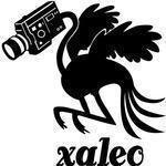 Xaleo studio - Xaleo production vidéo et studio de réalisation vidéo