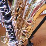 Thierry Maucarré - cours particuliers de saxophone et clarinette