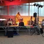 NDIABASSFAMILY - auteur comositeur interprète reggae