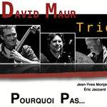 "Sortie d'album ""Pourquoi pas..."" David Maur Trio"