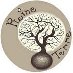 ASSOCIATION PLEINE TERRE - Initiation à la poterie et au modelage