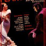 3ème Festival Semaine Flamenco
