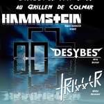 HAMMSTEIN / DESYBES / TRIGGER