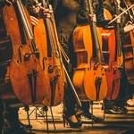 Recherche violoncelliste pour former duo