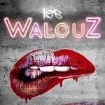 LES WALOUZ - Covers pop rock chansons