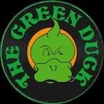TheGreenDuck - Concert celtique festif trad&folk rock