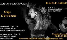 stage intensif rumba flamenca à castries