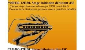 """Stage Harmonica """"Initiation débutant"""" et """"Débutant plus"""""""