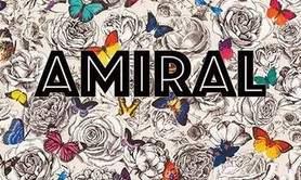 Talent86 - Groupe de musique AMIRAL