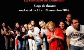 Stage théâtre Paris week-end novembre