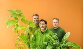 """Trio Vert """"développements durables"""""""