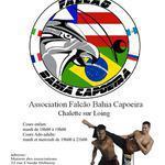 Ouverture des cours de capoeira à chalette sur loing