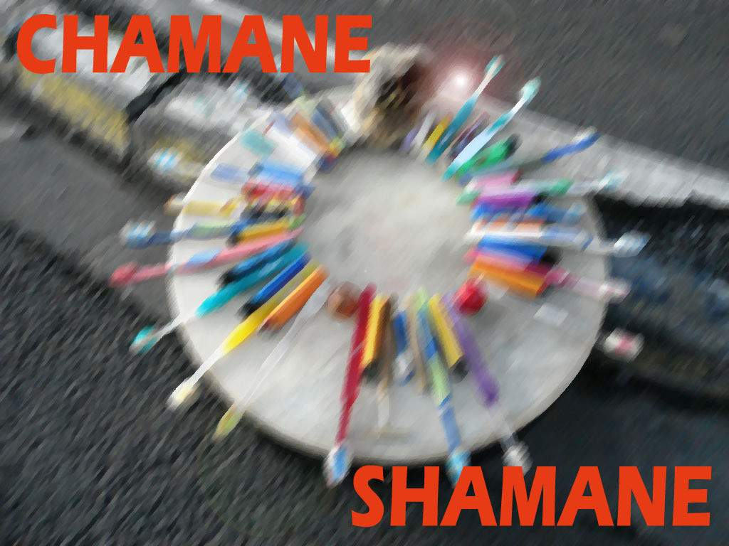 Patrick Sourdeval - Chamanes/Shamanes