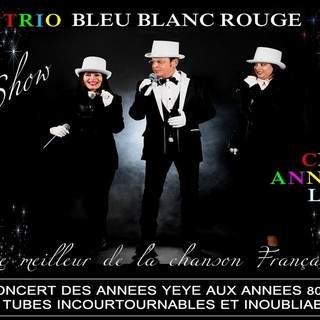 LES  SUCCES FOUS - Show  Bleu BLanc Rouge   les chansons des idoles  les annéees yéyé etc