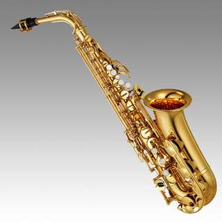 Atelier jazz-fusion cherche son nouveau SAX - EWI - flute...