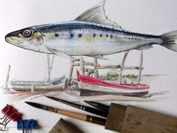 Stage aquarelle dessin peinture '' spécial marée basse''