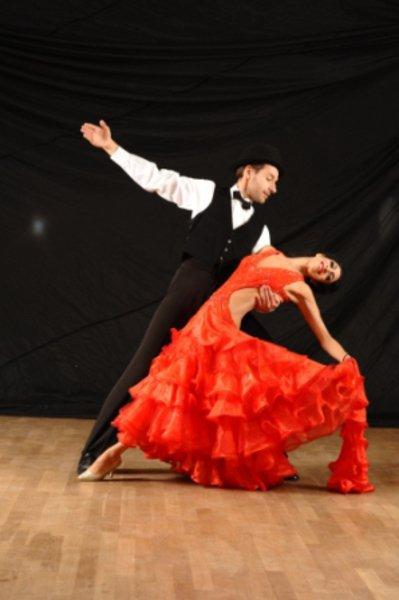 Danse de salon cours particuliers formation professorat for Danses de salon en ligne