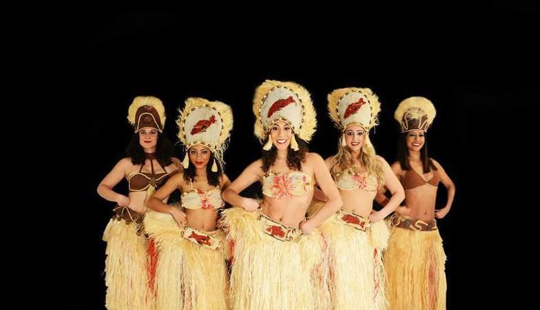 Lilas na danses br siliennes et tahitiennes maisons for Danse classique maison alfort