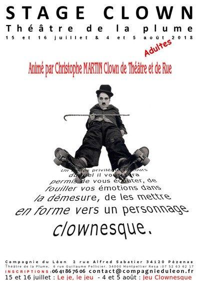 STAGES CLOWN, Thèmes  :  Le je, le jeu et jeu clownesque