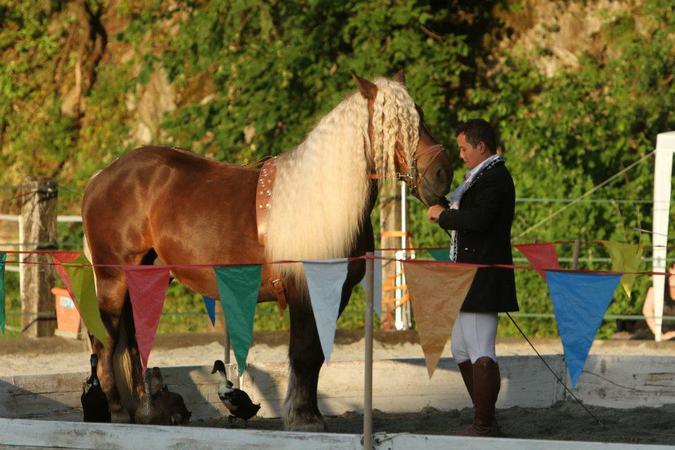 centre equestre romorantin