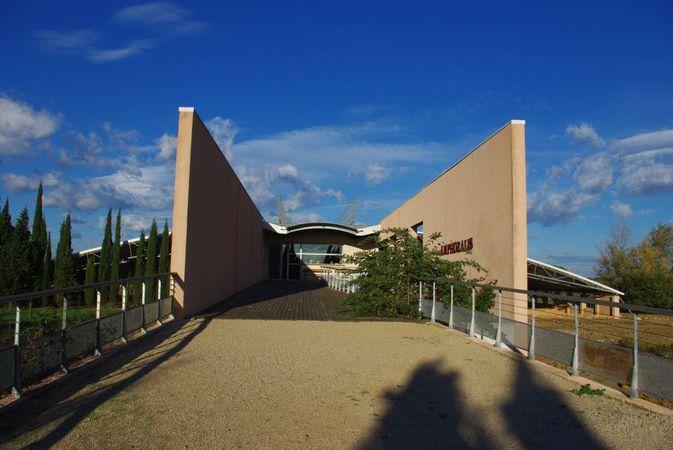 Visite guidée du musée