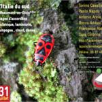Grand bal italien 100% calabrais
