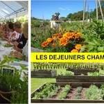 Déjeuners champêtres au château de Montigny-sur-Aube