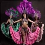 Troupe de danses tropicales Lilaséna - Samba/Maloya/Tahiti/Dancehall