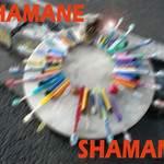 Patrick Sourdeval : Chamanes/Shamanes