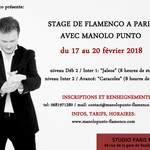 stage de flamenco avec Manolo Punto
