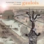 Visite Les Sénons. Archéologie&histoire d'un peuple gaulois