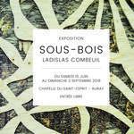 Exposition Sous-bois de Ladislas Combeuil