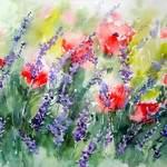 Stages d'aquarelle ou d'huile et  week end peinture en Provence