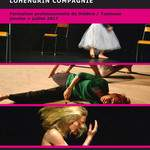 Cie LOHENGRIN - Présence d'Acteurs - formation professionnelle de théâtre