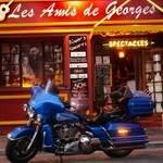 Georges Brassens le concert