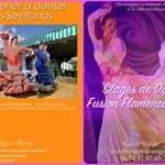 Stage Sevillanas et Fusion Flamenco-Arabe