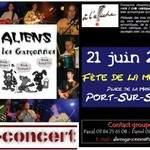 Aliens et les garçonnes, Rock Celtique à Port sur Saône