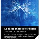 Exposition Palais Ducal de Nevers (58) 06/07 - 02/09/18