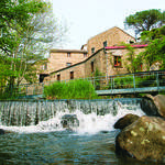 Le Moulin à papier de Brousses