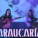 ARAUCARIA - Musique Chilienne Latino-Américaine