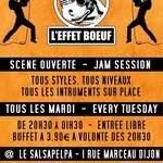 L'Effet Boeuf - La scène ouverte Dijonnaise TOUS STYLES TOUS NIVEAUX