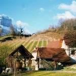 Visites guidées du Moulin à papier de la Tourne