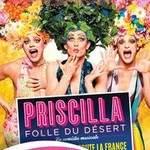 PRISCILLA FOLLE DU DÉSERT LE MUSICAL