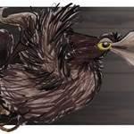le dernier des corbeaux