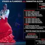 Flamenco intensif