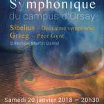 Concert Grieg - Sibelius
